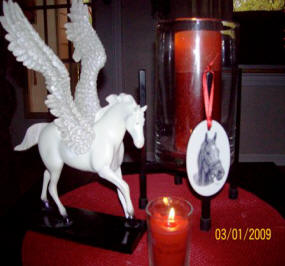Susan Chiellini's Windchill memorial candles