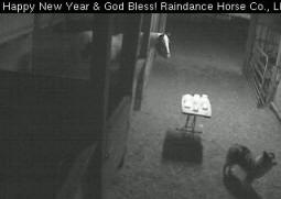 Raindance Farms barn cam Windchill memorial candle burning