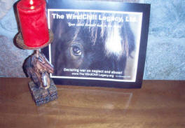 Windchill rescue colt memorial candle