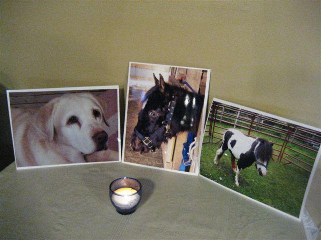wind chill memorial candle rescue colt